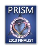 2013 Finalist Badge